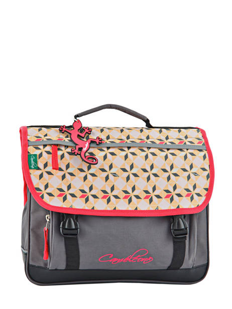 Cartable 2 Compartiments Cameleon Rose new basic NBA-CA38