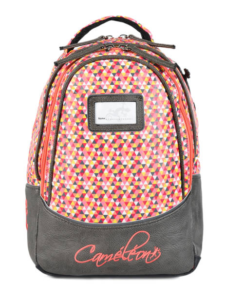 Backpack 2 Compartments Cameleon Gray retro RET-SD31