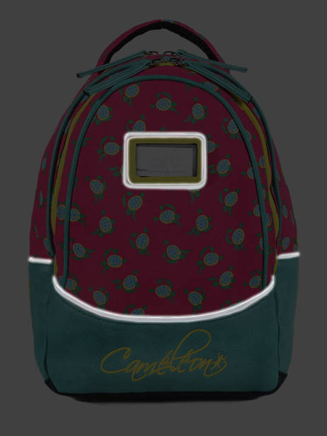 Backpack For Kids 2 Compartments Cameleon Pink retro RET-SD31 other view 6