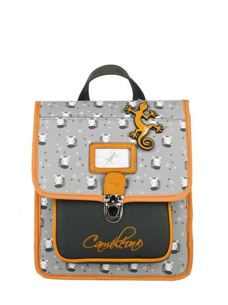 Backpack Cameleon Gray retro PBRESD30