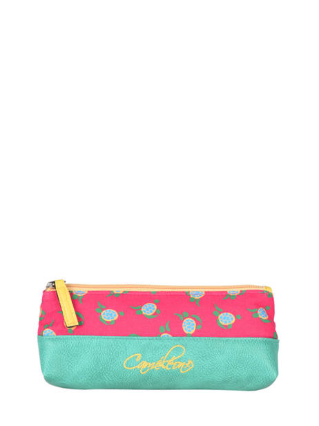 Pencil Case 1 Compartment Cameleon Green retro PBRETROU